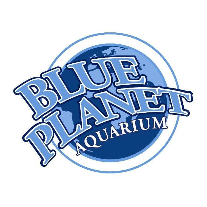 Image result for blue planet aquarium