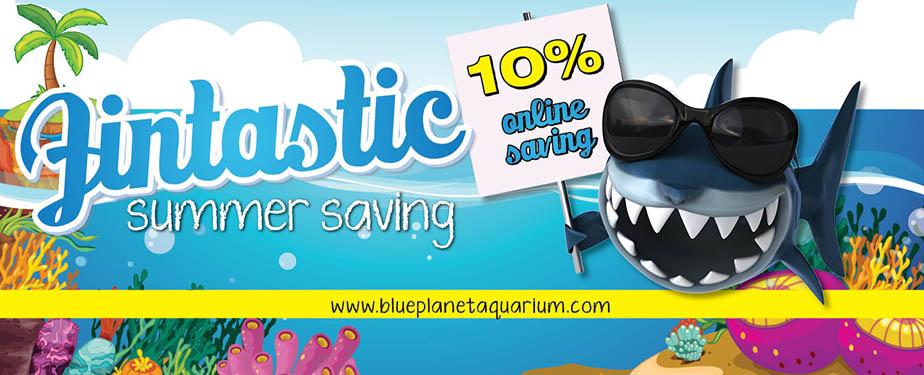 Blue Planet Aquarium Home To Over 100 Living Displays