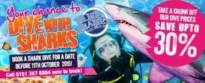 Dive promotion August 2015