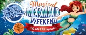 Mermaid web banner 2015