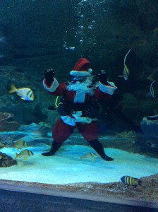 Scuba Santa at Blue Planet Aquarium