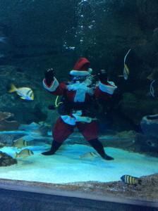 Scuba Santa at Blue Planet Aquarium