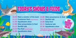BPA-shows&feed